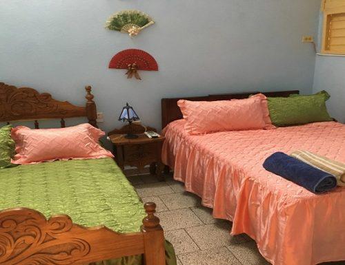 Areca1 500x385 - Accommodation